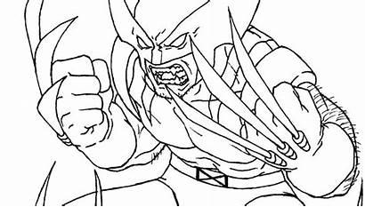 Coloring Wolverine Pages Lego Superhero Cartoon Animal