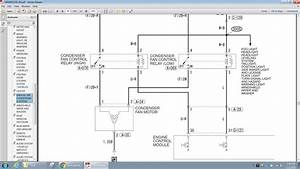 Spal Cooling Fan Wiring Diagram