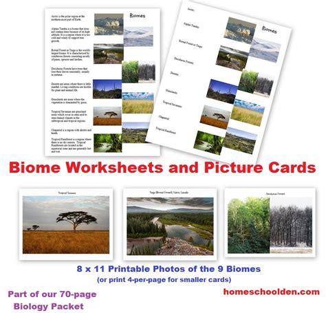 Earth Floor Biomes Grassland by Biomes Worksheets Fioradesignstudio