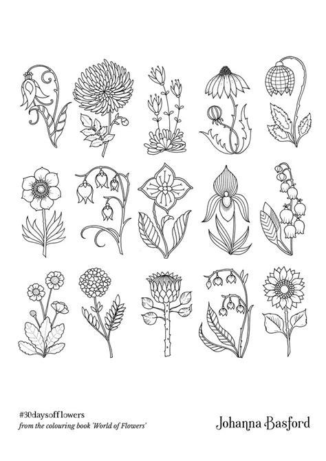 pin  becky bushong  johanna world  flowers