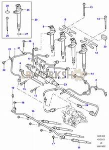 Fuel Injectors  U0026 Pipes - 2 4 Tdci