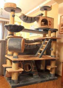 cat playhouse 25 best ideas about cat playhouse on