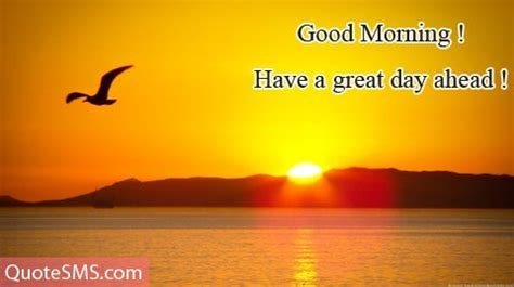 Good Morning Images Hd, Good Morning Photos, Best Wallpapers