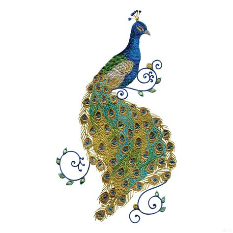 Peacock Applique by Swnpa136 Peacock Embroidery Design Peacocks Peacock