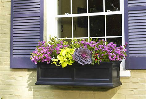 Outside Window Sill Planter by Flower Boxes