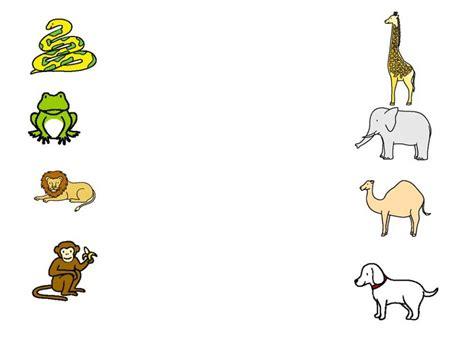 zoo dear names animal worksheet animals liveworksheets