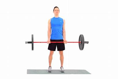 Curls Hammer Barbell Weighted Livestrong Differences Technique
