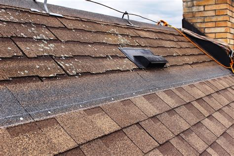 Proper Nailing Is Essential To The Performance Of Roof Red Roof Inn San Antonio Texas Chapel Hill North Carolina Cedar Repair Amish Roofing Contractors Tuscon Pittsburgh Pa Moss On The Copper Shingles