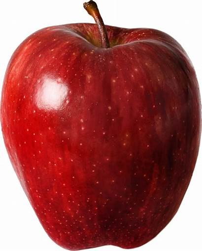 Apple Transparent Delicious Clipart Apples Icon Classic