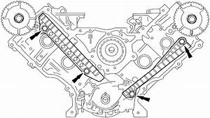 2004 Lincoln Navigator Engine Timing Chain Diagram