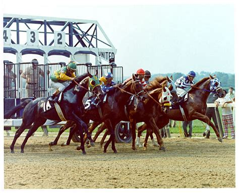 secretariat sham horse belmont stakes 1973 racehorse thoroughbred race derby kentucky pedigree 1a aspen tribute racing blinkers track pictured outside