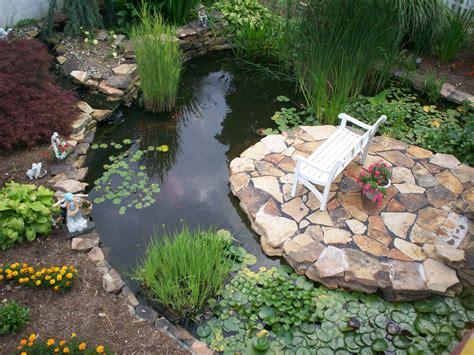 water garden designs ideas easy simple landscaping ideas
