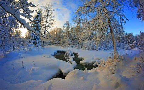 Nature, Hd,winter, Snow, Free Stock Photos, Tumblr, Nature