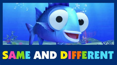 Same And Different  #07 Sing And Learn  Learn Same And Different  For Babies And Kids Youtube