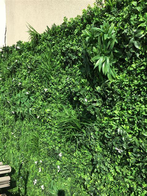Mur Vegetal Artificiel Classique