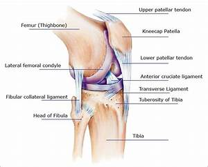 Knee Pain  Symptoms  Causes  Treatments For Relief Or