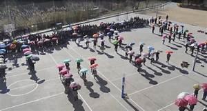 Centre Activa Pau : dia escolar per a la no viol ncia i la pau denip ~ Melissatoandfro.com Idées de Décoration