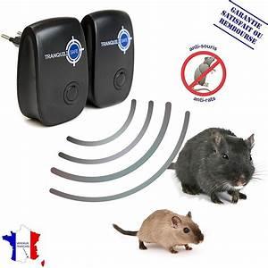 Répulsif Souris Efficace : tranquilisafe lot de 2 r pulsifs ultrason rats et souris r pulsif anti rongeurs solution ~ Melissatoandfro.com Idées de Décoration