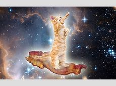 animals, Cat, Bacon, Space, Surreal Wallpapers HD