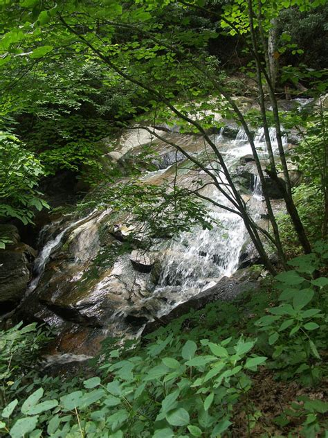 Photo Gallery: Glen Burney Trail