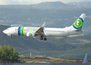 Telephone Transavia : photo 9710 transavia airlines boeing 737 8k2 oy tdb at tenerife south reina sofia plane mad ~ Gottalentnigeria.com Avis de Voitures