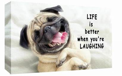 Pug Dog Better Laughing Quote Canvas A2