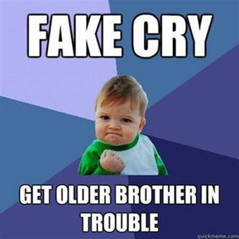 Funny Sibling Memes - funny older brother quotes quotesgram