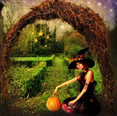 the witch garden a crash course in a witch s garden paganpath