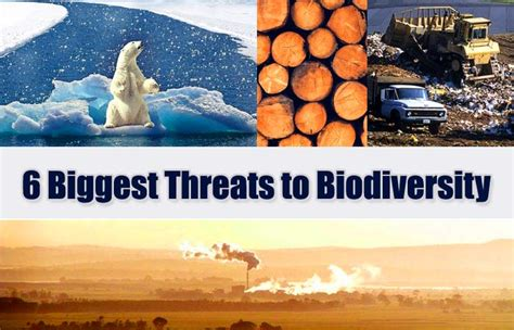 threats  biodiversity  major loss  biodiversity