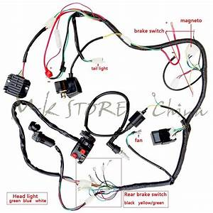Complete Electrics Atv Quad250cc Coil Cdi Harness Wiring