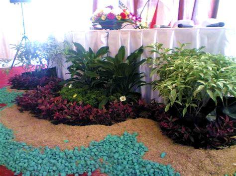 tanaman hias event jasa pembuatan taman murah
