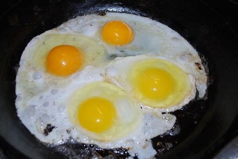 Yolk Egg egg yolk colour feed or breed heliotrust