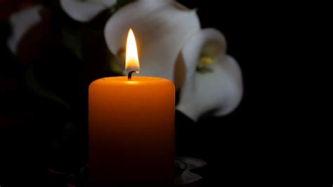 Actress Jessica Campbell dies at 38 | localmemphis.com