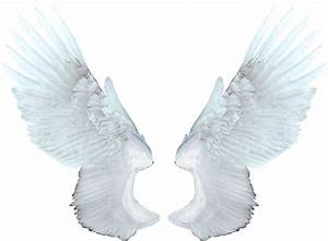 White angel wings PNG