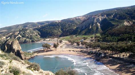 cuisine estivale la plage de moscarda en algérie