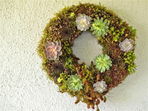 succulent wreath  arrangements diy