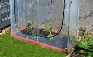Gewächshaus Bewässerung Mit Regenwasser : tomatenhaus gew chshaus fr hbeet ~ Watch28wear.com Haus und Dekorationen