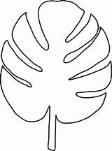 Tropical Leaves Drawing Leaf Palm Coloring Colouring Getdrawings sketch template