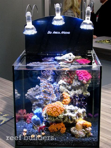 led nano reef from aquamedic is a hit at interzoo 2010 reef builders the reef and