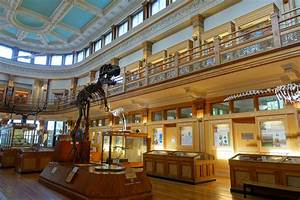 File:Dawson Gallery - Redpath Museum - McGill University ...