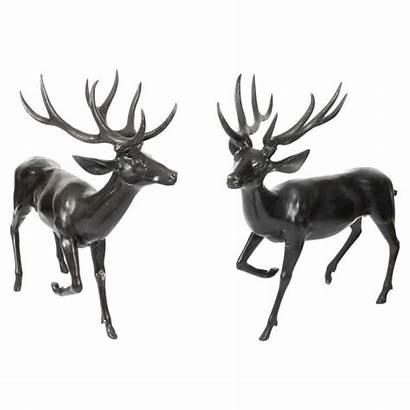Deer Bronze Fallow Pair Late Stags Century