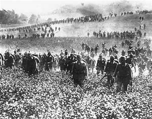 World War One timeline   Timetoast timelines