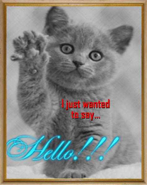 Just Wanted To Say Hello! Free Hi eCards, Greeting Cards ...