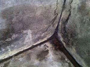 Etancheite Mur Exterieur Sous Sol : refaire l 39 tancheit par l 39 ext rieur de sous sol semi enterr 5 messages ~ Melissatoandfro.com Idées de Décoration