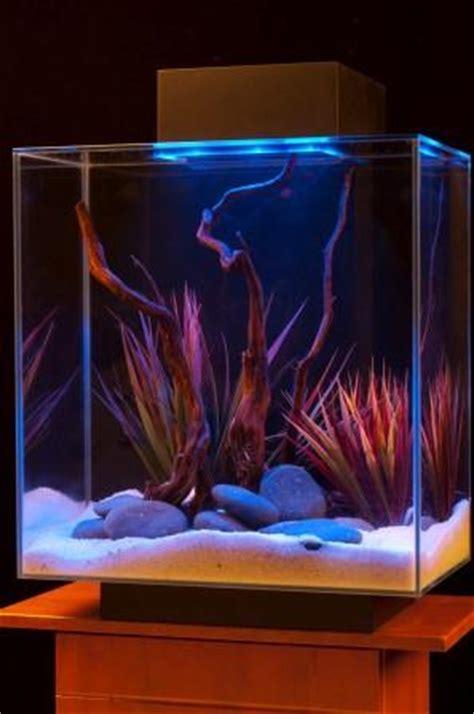 Amazon.com : Fluval Edge 12-Gallon Aquarium with 42-LED
