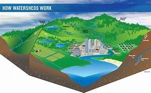 Exploring Watersheds