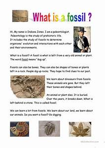 What Is A Fossil Worksheet Free Esl Printable