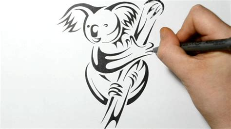Draw A Real Time Drawing How To Draw A Koala Real Time Drawing