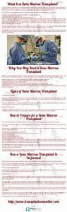 1000+ images about Bone Marrow Transplantation ...