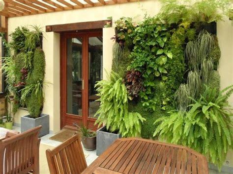 quelles plantes pour un mur v 233 g 233 tal 5 233